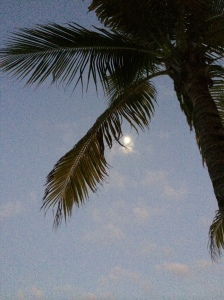 Beautiful moon from our beach.